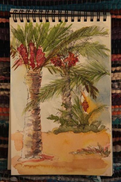 date palms - Anafora