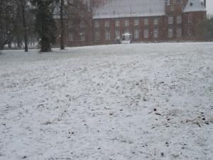 снег 001