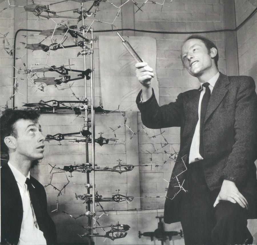 0010-004-Do-istiny-dokapalis-Dzhejms-Uotson-i-Frensis-Krik-v-1953-godu