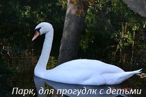 DSC_1131