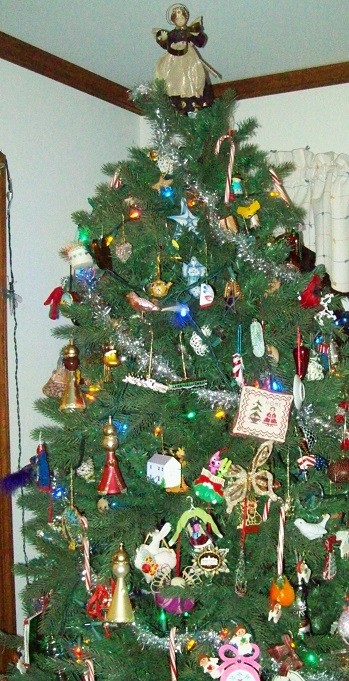 mom and dads tree 2014 a