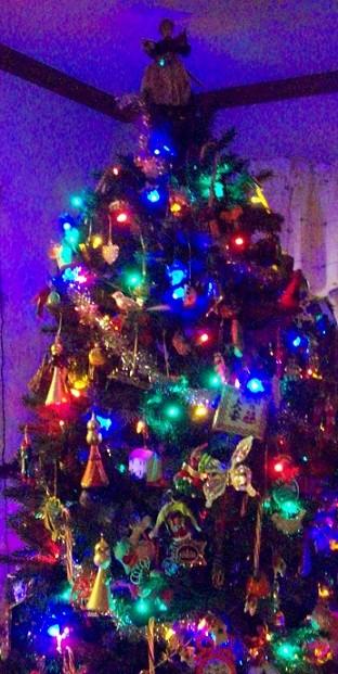 mom and dads tree 2014 b