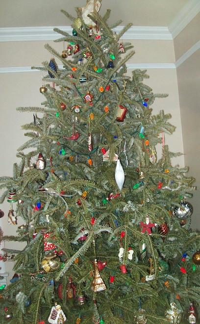 kps tree 2014
