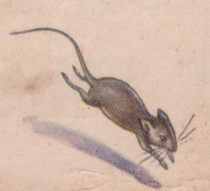 MouseLib2