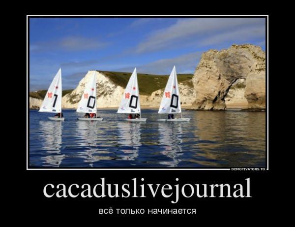 775135_cacaduslivejournal_demotivators_ru