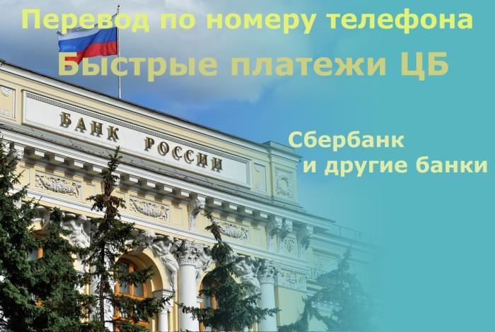 Виды кредитных организаций в россии