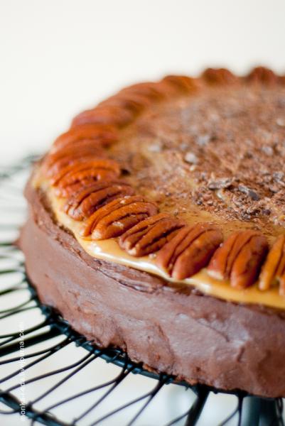 pumpkin chocolate-caramel turtle cake