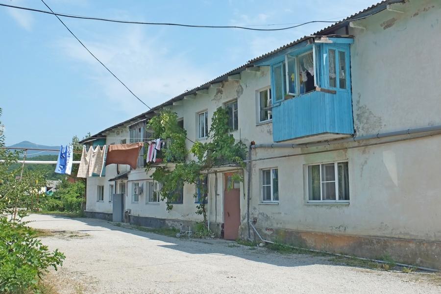упряжке, сделанный георгиевское краснодарский край фото качественные фото оскал