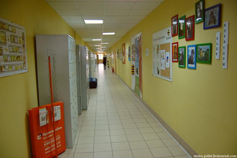 коридор билайна