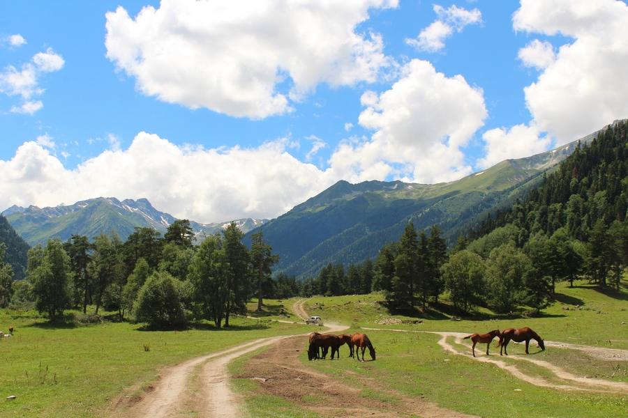Архыз - горный край