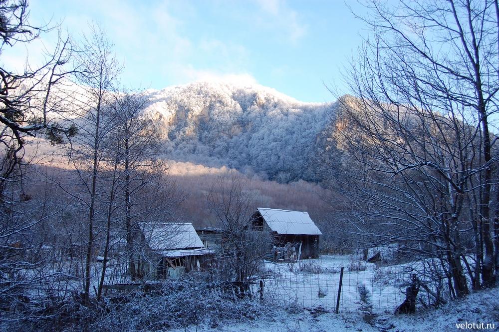 гуамка зимой