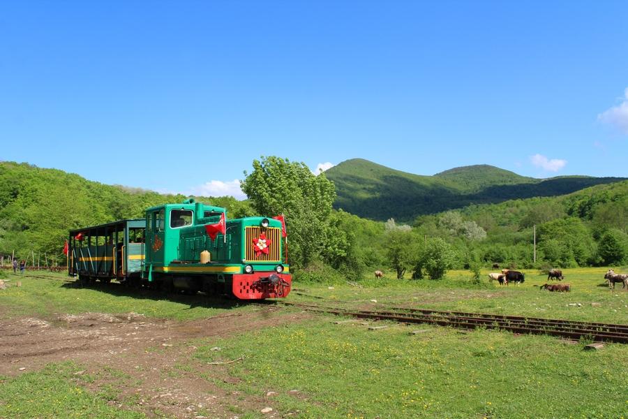 Узкоколейная железная дорога в Краснодарском крае Краснодарский край