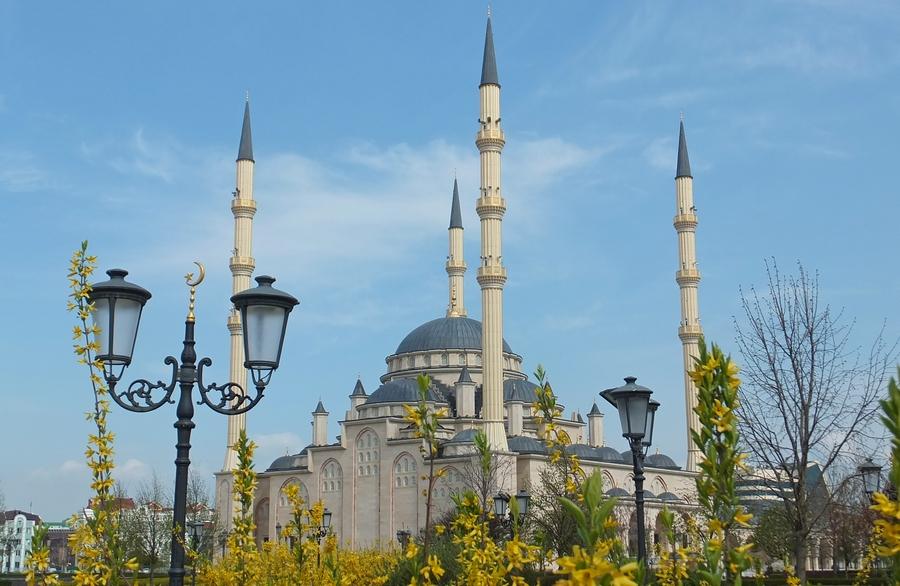 В этом отчете фотографии мечетей и