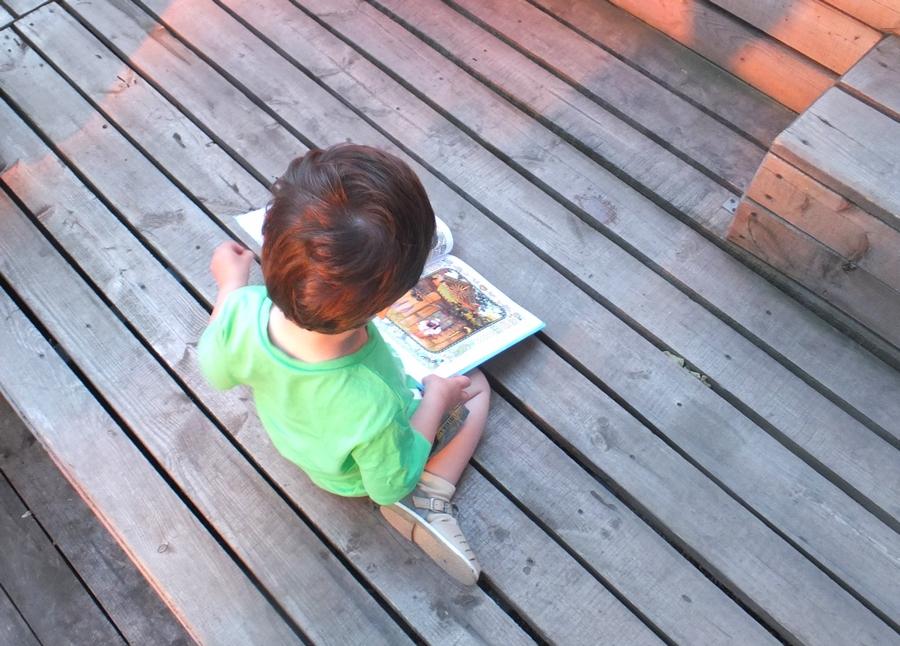 Олигарх с большой медведицы книга читать