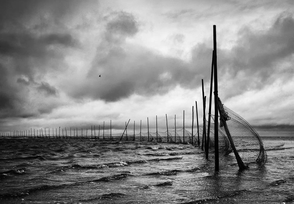 Сети на Белом море