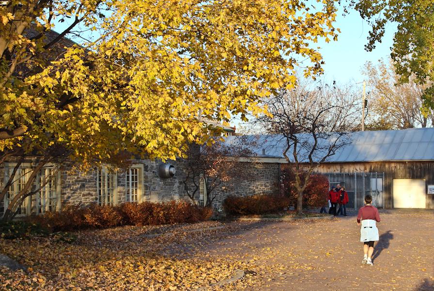 Lachine 6 novembre 2011-33