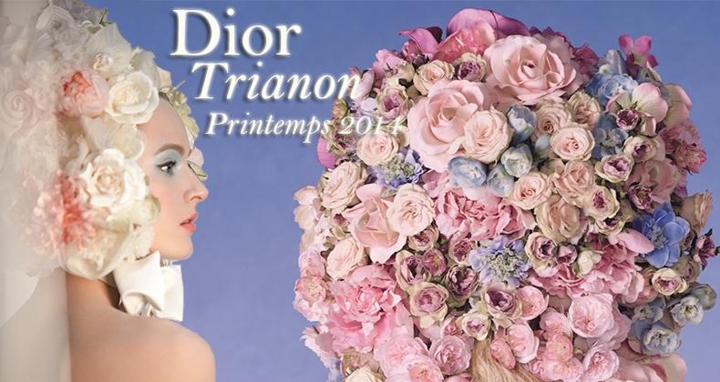 slide-dior-trianon-printemps-2014