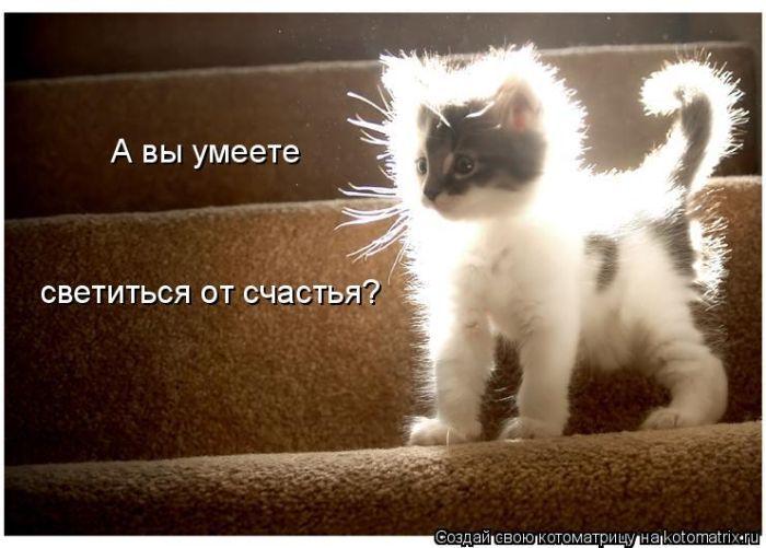 1284943003_kotomatrix-4