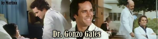 Banner_Gonzo