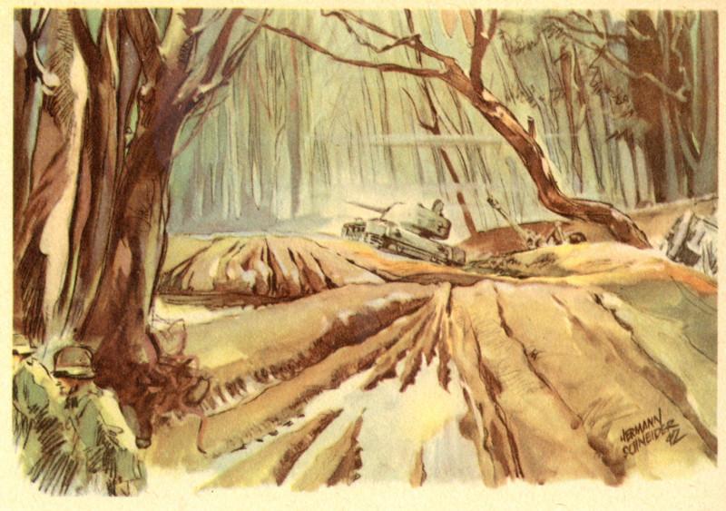 Aus dem Wald von Kolodesy (69) 1