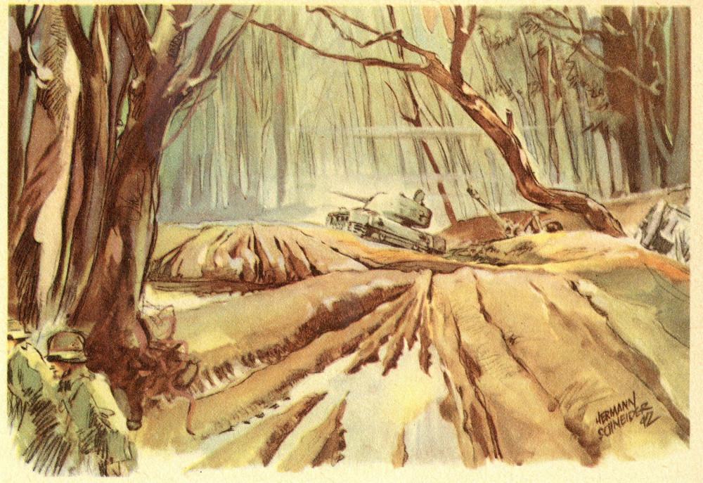 Aus dem Wald von Kolodesy (69) 2