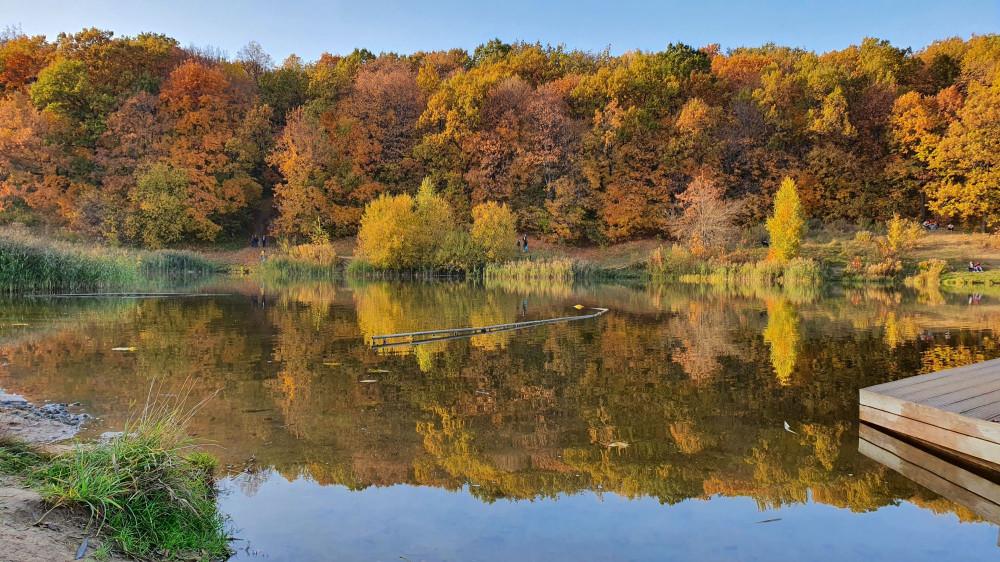 Третье озеро Щелковского хутора. Октябрь 2020. Тут лягушатник. Деревяшка справа - это нововведение, к которому у меня есть вопросы