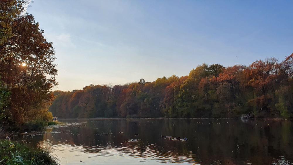 Второе озеро Щелковского хутора. Октябрь 2020