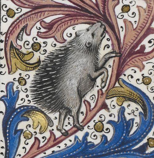 Еж. Нидерланды Брюгге 1471-1483 Recueil des croniques d'Engleterre from Jean de Wavrin