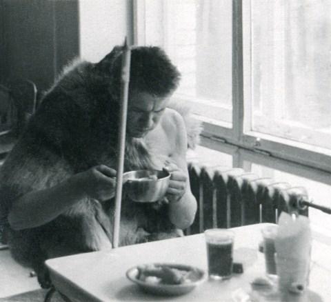 Завтрак «Петя-кантропа» в студенческой столовой