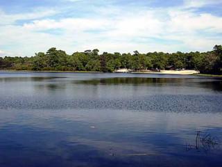 Bellows Pond