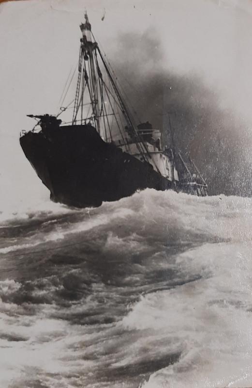дизель-электрическое китобойное судно.jpg