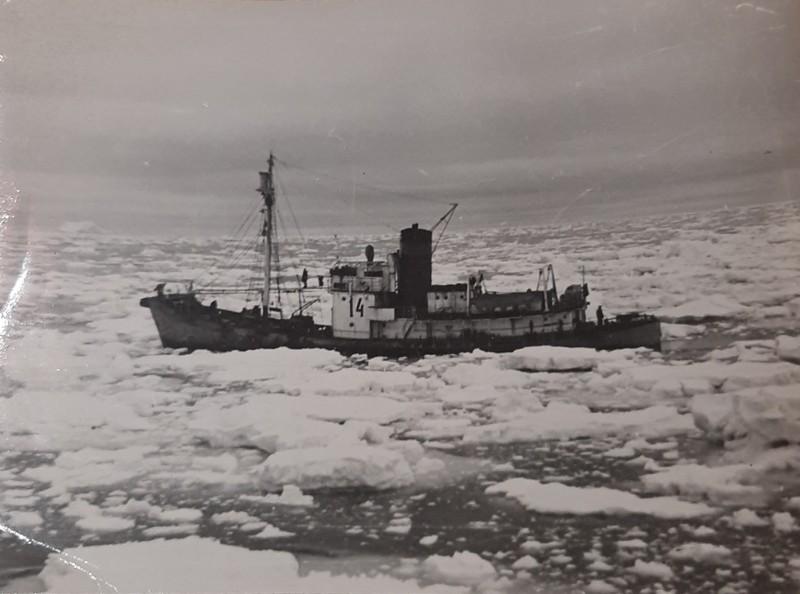 Паровое китобойное судно, полученное по репатриации.jpg