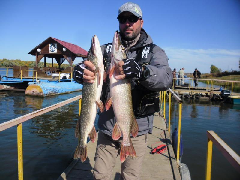 осенний запрет на рыбалку в 2016