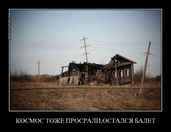 704wvkc0q1e5.jpg