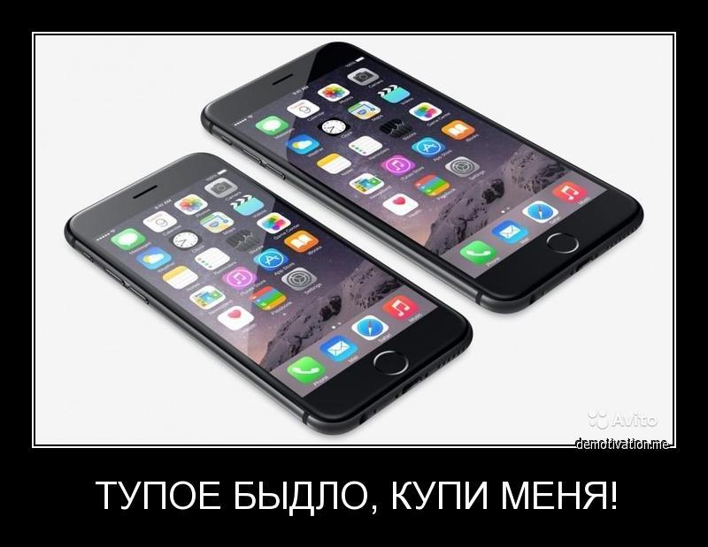 xdmk5tjgc35h.jpg