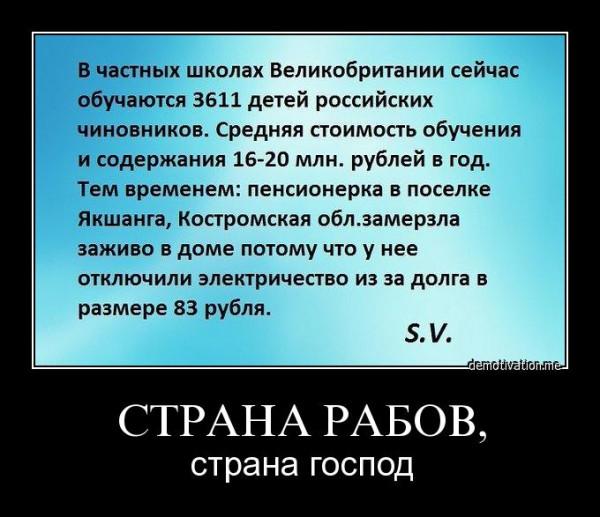 g7gf5je6xylw.jpg