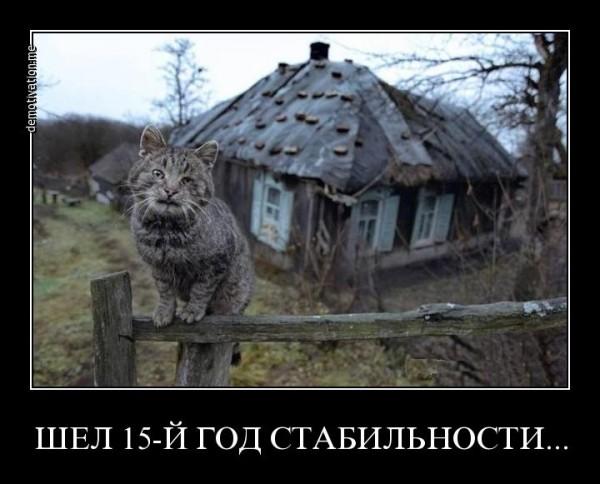 t59evbo51duw.jpg
