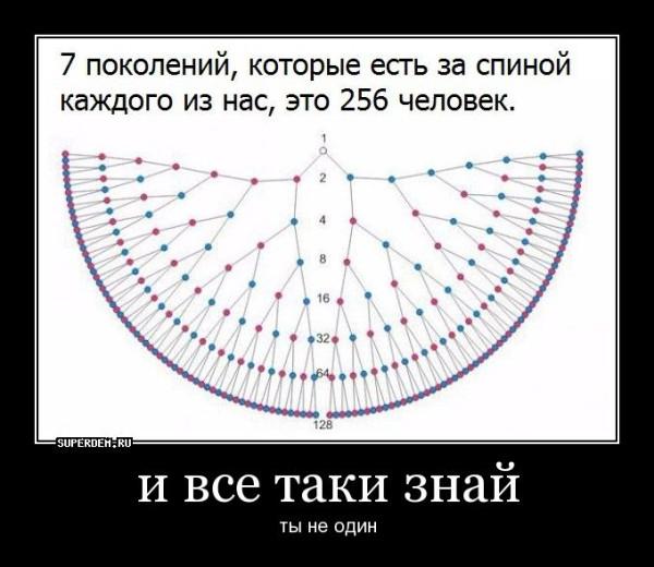 scrin15803.jpg