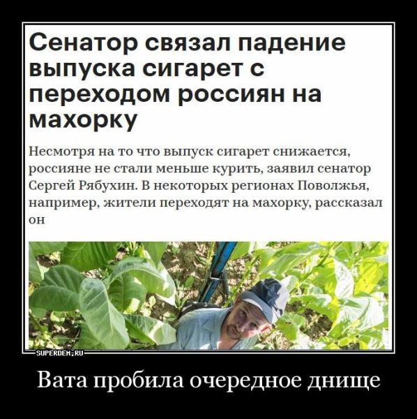 scrin107836.jpg
