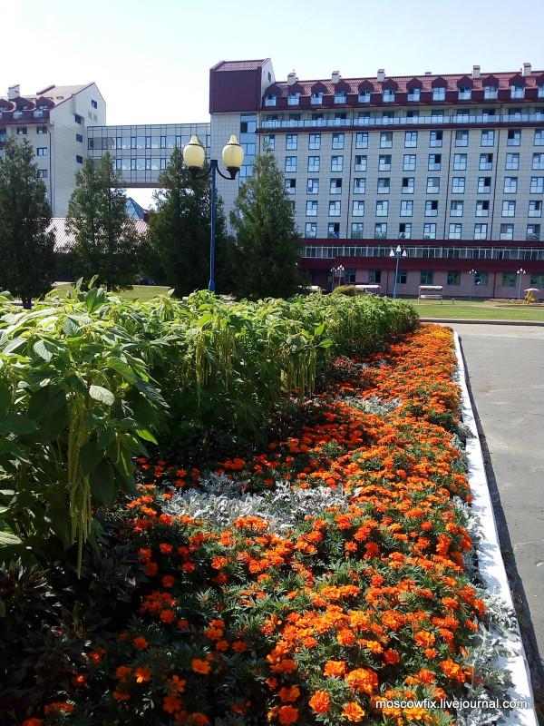 Озеро Белое Шатурский район (12).jpg
