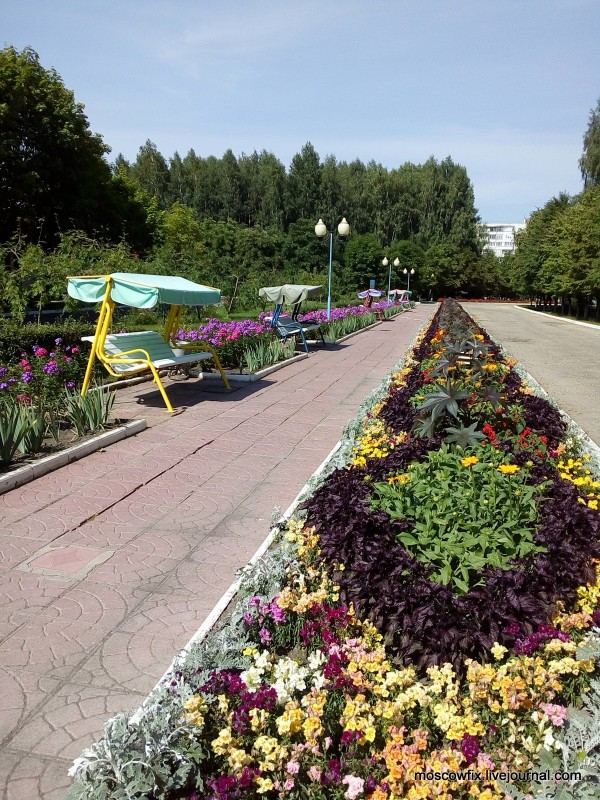 Озеро Белое Шатурский район (13).jpg