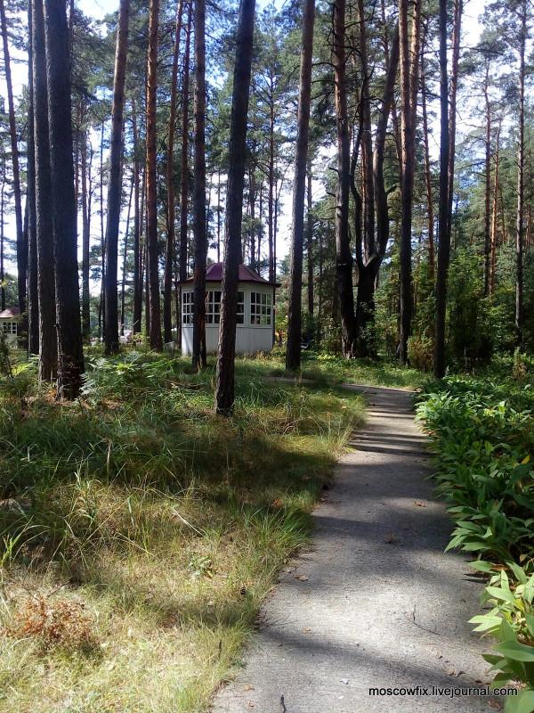 Озеро Белое Шатурский район (35).jpg