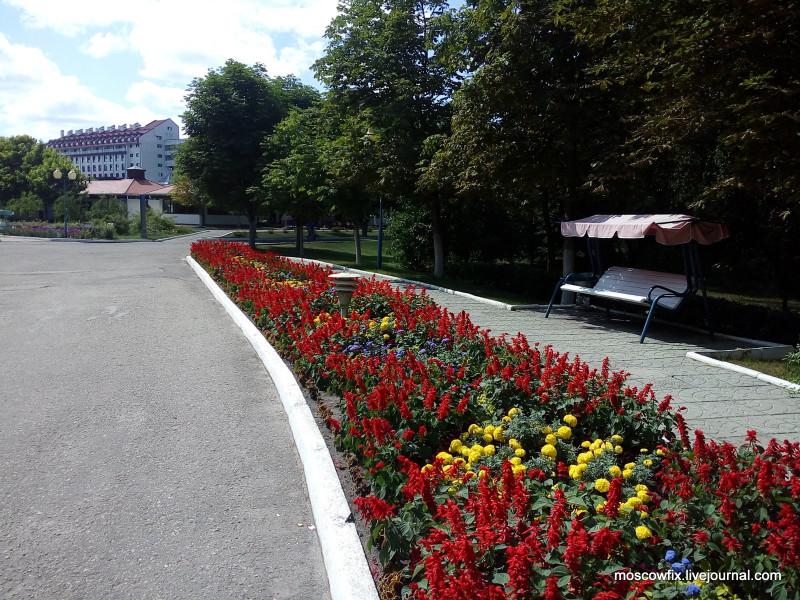 Озеро Белое Шатурский район (40).jpg