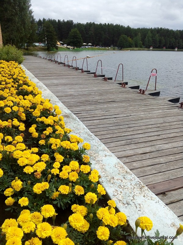 Озеро Белое Шатурский район (55).jpg