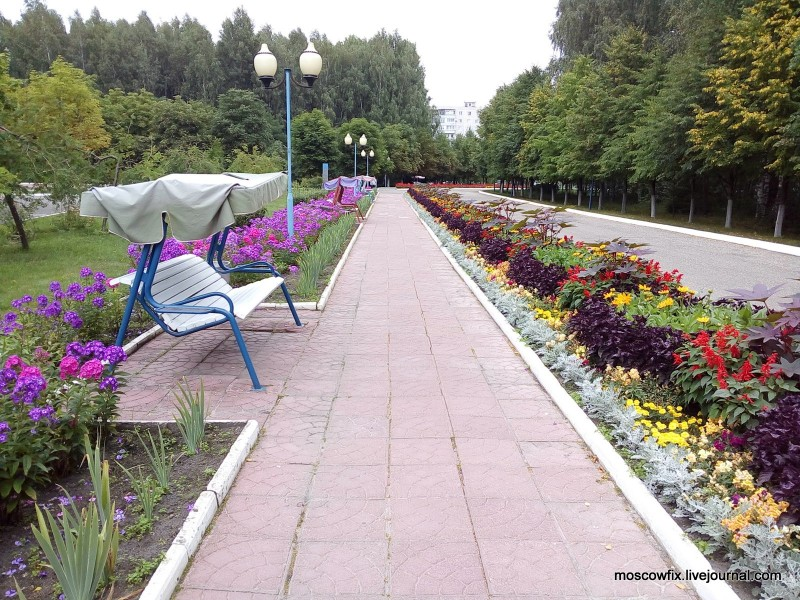 Озеро Белое Шатурский район (66).jpg