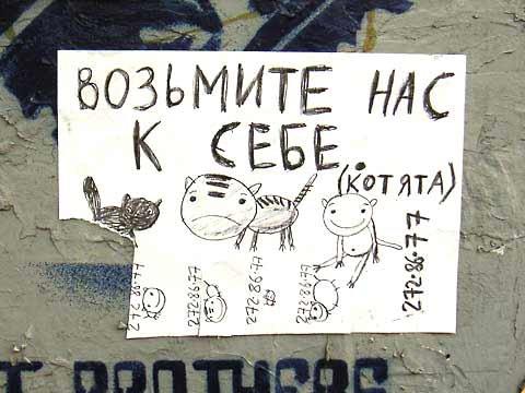 Все для вас ростовская доска объявлений