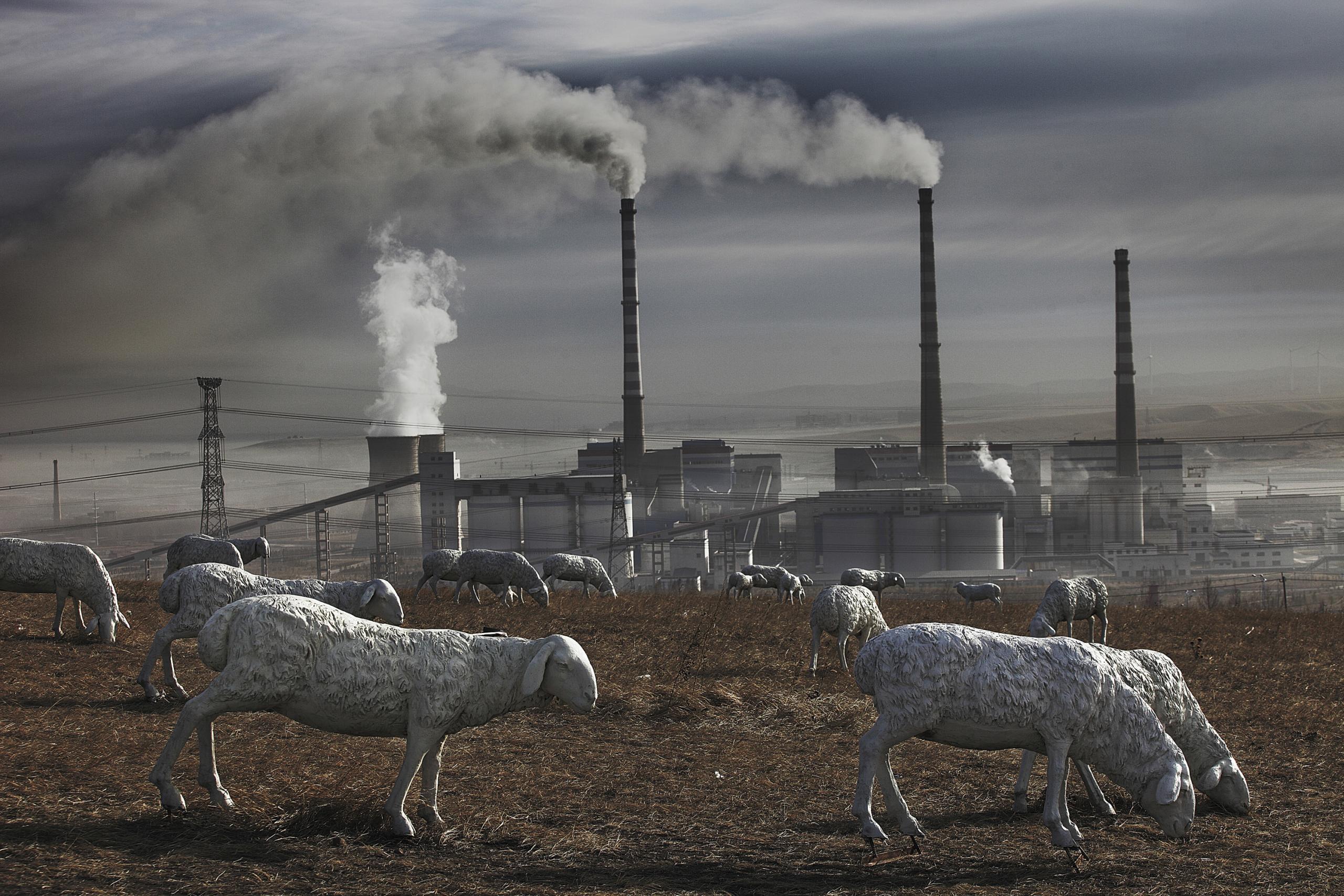 китай экологические проблемы фото