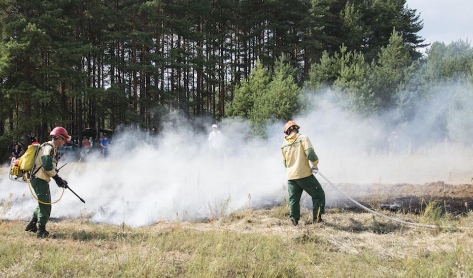Картинки защита природы от пожара