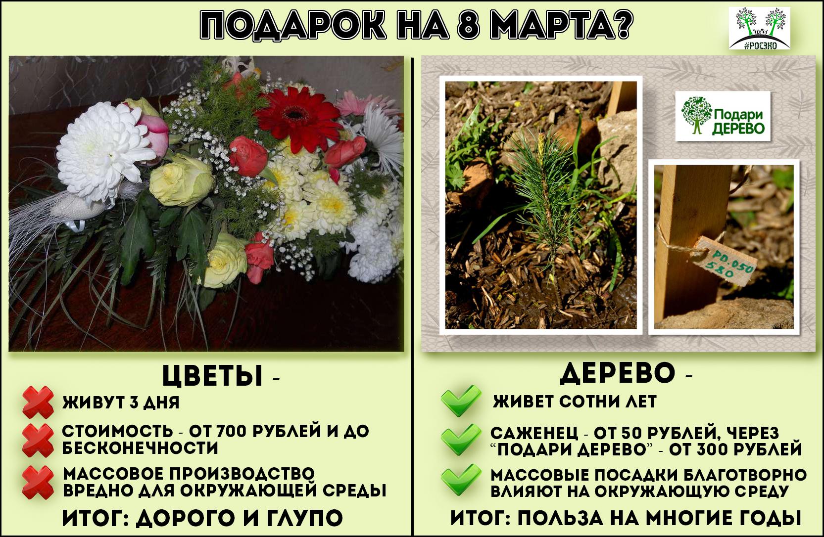 Живые срезанные цветы - это жертвоприношение подарок молознакомому мужчине