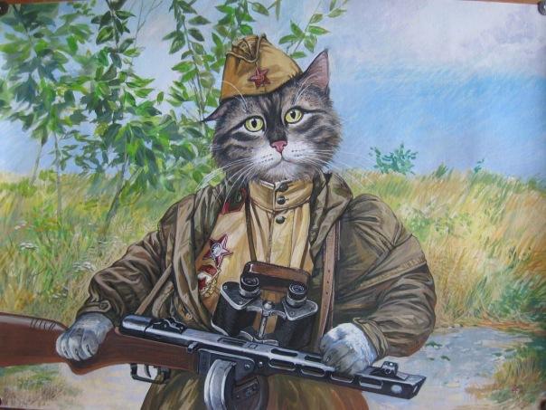 Кот военный